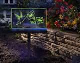 images of Garden Signs Business